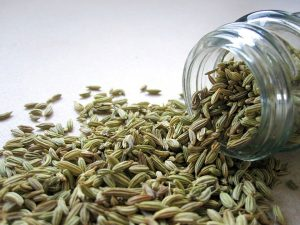 Fennel, spice, eye infections