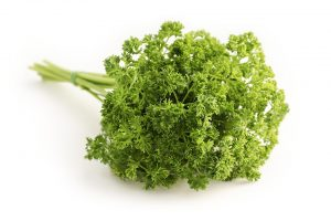 parsley, herb, bee