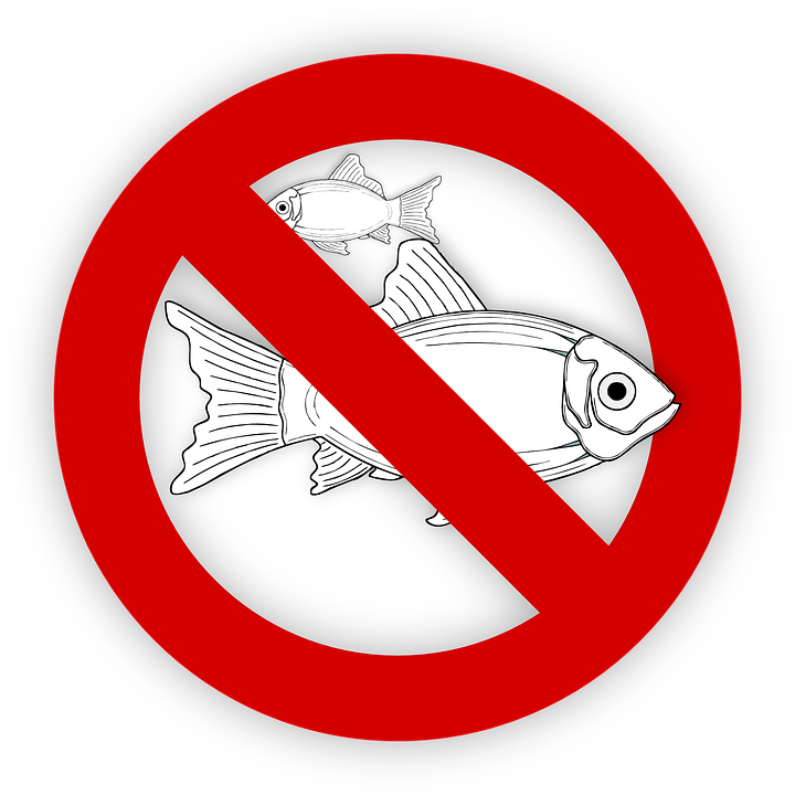 allergy, allergies, fish, avoid, angular chelitis