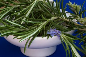 rosemary, herb, muscle cramps