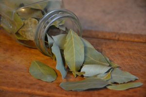 bay leaves, spice, herb, chest congestion