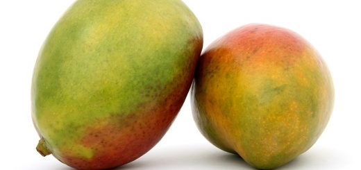 mangoes, antioxidants, fruit