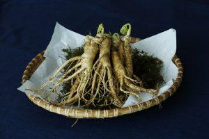 ginseng, root, menopause