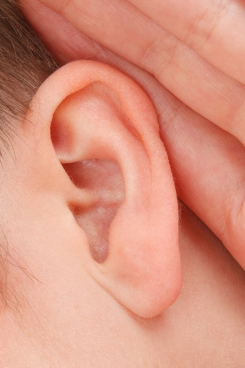 ear, hearing, earache, home remedies for ear infections, ear infection