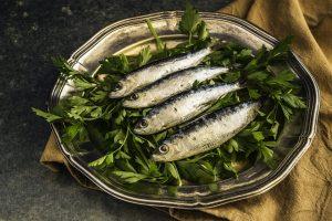 fish, sardines, fish oil,